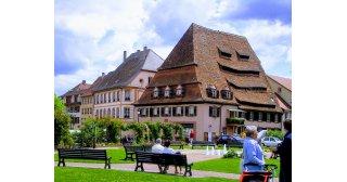 3 Tages Tour Eltern/Kids Elsass Südpfalz